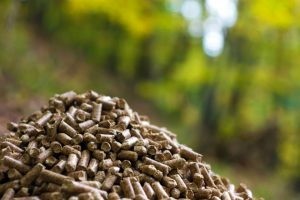 Are Wood Pellets Safe to Cook with?